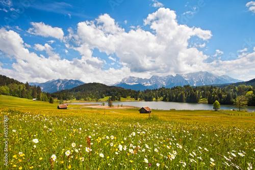 canvas print picture Blumenwiese im Voralpenland