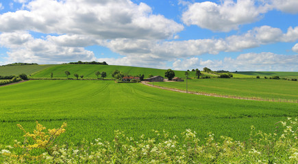 An English Rural Landscape