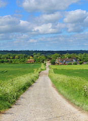 An English Rural Landscape with Farm
