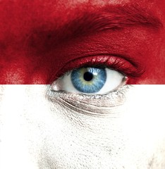 Human face painted with flag of Monaco