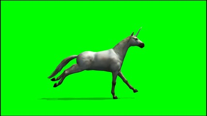 Unicorn runs  - green screen