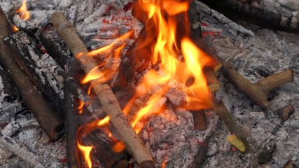 Close up of a campfire and putting some log wood into the fire
