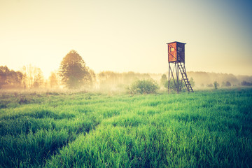 vintage sunrise over meadow with raised hide