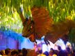 Gracia Festival in night. Barcelona