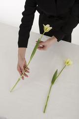 チューリップの花を手向ける喪服姿の女性