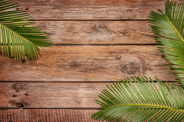 Palm tree leaves on vintage planked wood background