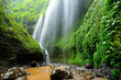 Madakaripura Waterfall-Deep Forest Waterfall in East Java, Indon