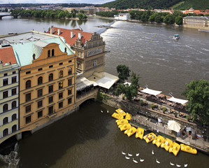 Catamarans and swans on the river Vltava in Prague.