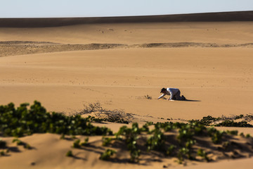 Hiker in the Desert searching for Water, Namibia