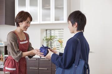 お弁当を手渡す母親と男子中学生