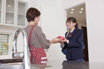 お弁当を手渡す母親と女子高校生