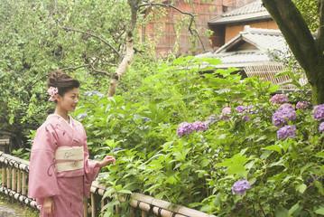 祇園白川を歩く和服姿の女性