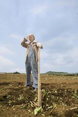 畑の中に立つシニア男性