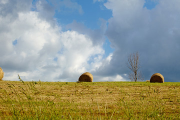 Hay bales on the field after harvest, Tuscany, Italy