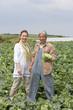 キャベツを収穫するシニアカップル