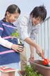 プランターに植物を植える父と子
