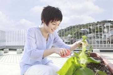 ベランダで植物の手入れをする女性