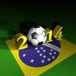 Fussball 2014 Brasilien F