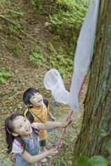昆虫採集をする男の子と女の子