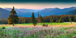 Colorful morning panorama of the Carpathian mountains