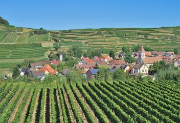 der bekannte Weinort Achkarren am Kaiserstuhl