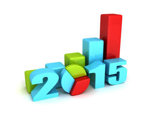 successful business bar and pie graphs 2015 year