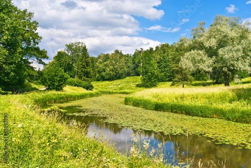 Pavlovsk Park near Saint Petersburg, Russia - 65593890