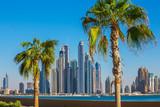 Fotoroleta Dubai Marina. UAE