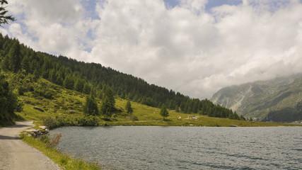 Maloja, Dorf, See, Silsersee, Wanderung, Alpen, Schweiz