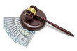 gavel and U.S. dollars on a white background. horizontal photo.