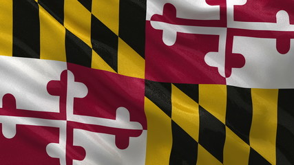 US state flag of Maryland waving in the wind - loop