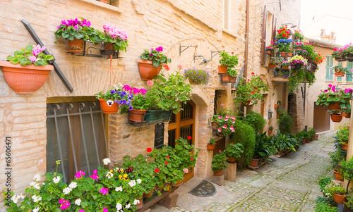 Vicolo con fiori, Spello - 65606471