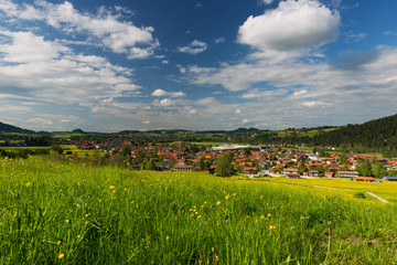 view over small village in germany with fresh green meadow