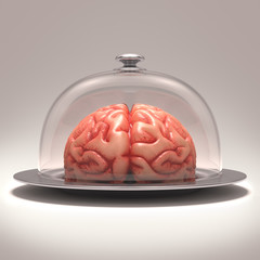 Brain dome. Clipping path included.