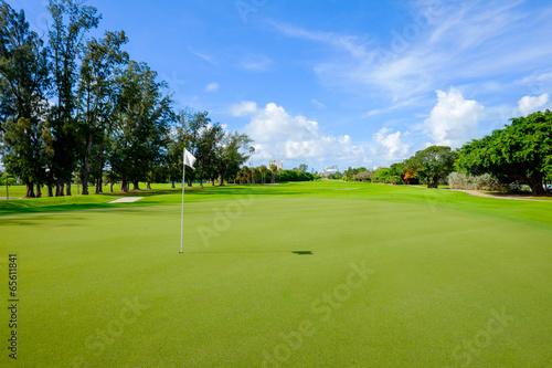 Golf - 65611841