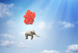 Elephant with balloons - 65614461
