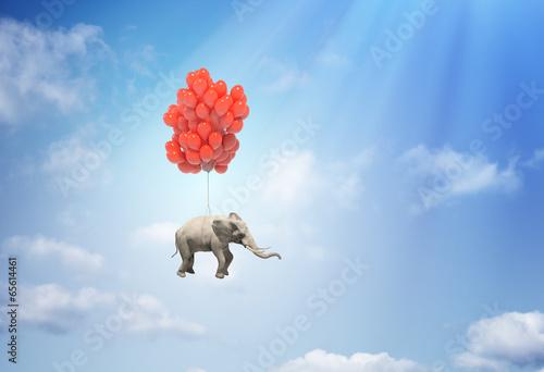 Leinwanddruck Bild Elephant with balloons