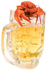 рак и стакан пива