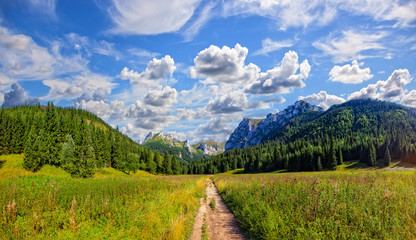 Small Meadow Valley in the Polish Western Tatras, Poland