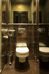 Interior of a modern toilette