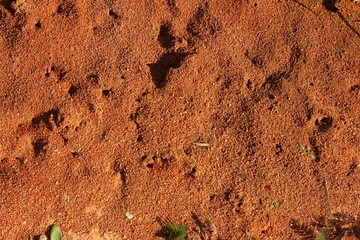 soil blackground in the nature