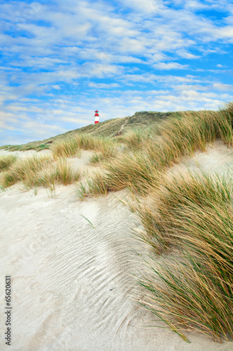 Sommer am Wattenmeer - 65620631