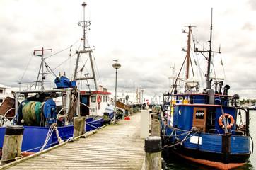 Rügen: Ostsee-Hafen, Fischkutter :)