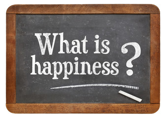 What is happiness question