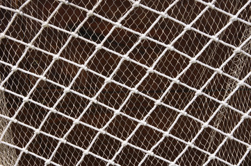 Two fishing nets  on brown background