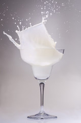 coppa di latte splash