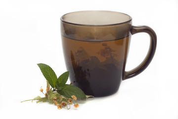 cup of linden mint tea