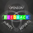 Feedback Displays Reports and Surveys of Opinions