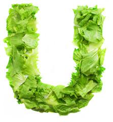 u lettuce letter on a white background