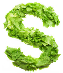 s lettuce letter on a white background